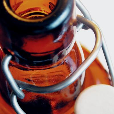 Caixa 12 ampolles per a cervesa casolana