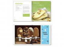 Libro recetas helados Zoku (castellano)