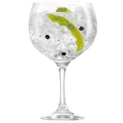 Copa Gin Tonic plástico tritan