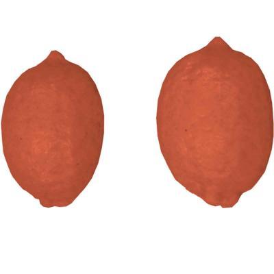 Molde Mona Pascua chocolate Limón