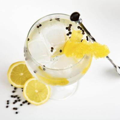 Copa Gin Tonic 700 cc tritan